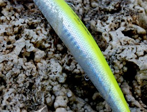 TIDE MINNOW SLIM 120
